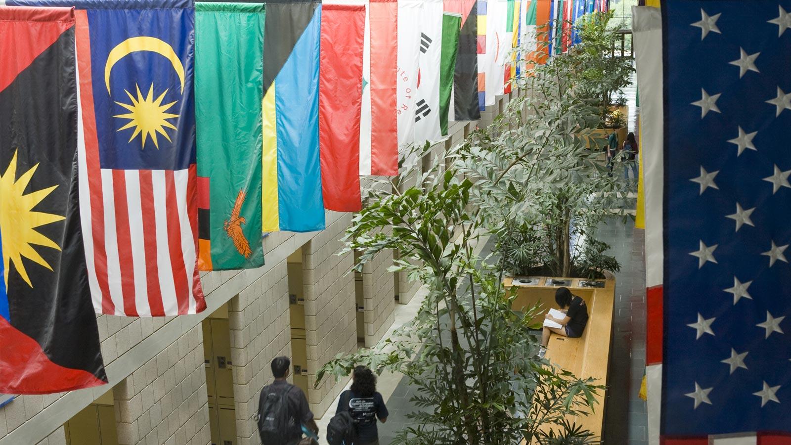mallway-flags
